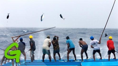 业余钓鱼跟专业钓鱼的差距有多大?20秒后我服了!