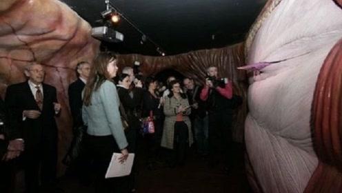 """全球唯一的""""人体博物馆"""",内部结构逼真,很多人看完都觉得尴尬"""