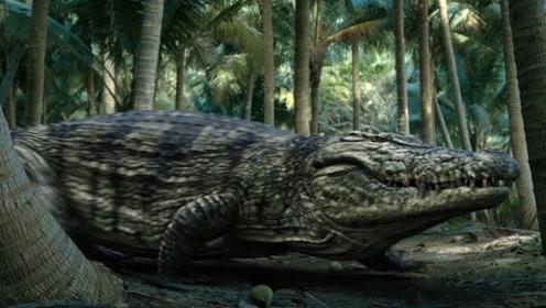 史前巨鳄惊现荒岛捕食,探险家无一生还