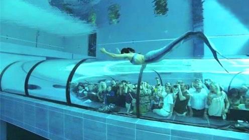 """水族馆的""""美人鱼""""表演,虽然好看,但背后心酸无人知"""