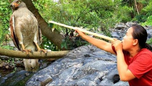 女汉子用秘密武器,成功捉到大鸟,这样吃鸟肉简直太嗨了!