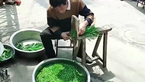 看到大哥切韭菜的工具,我直接愣住了,这是谁设计的太有才了!
