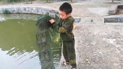 下午去鱼塘收地笼,一个地笼全是鱼仔仔,一个全是虾