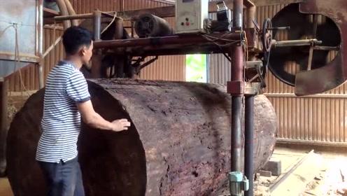 日本工厂实拍:大型锯切割超大原木,切割成木板,看着好过瘾!