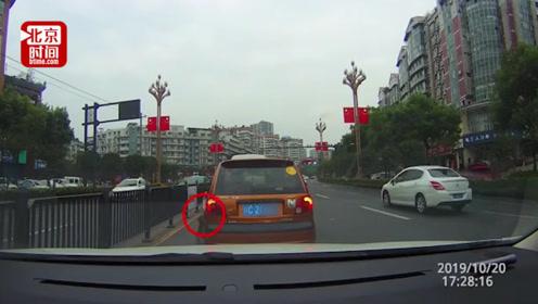 司机嫌猫不听话将其丢出车窗 交警:罚款扣分+爱心教育