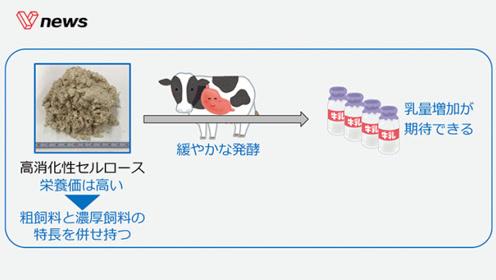 """日企又现脑洞研究,给牛喂""""纸""""可让牛奶更好喝"""