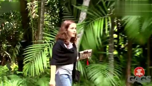 """歪果仁作死日常,动物园大猩猩""""逃走"""",朝路人扔香蕉!"""