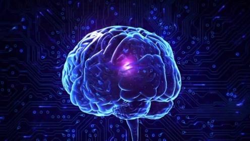 人类大脑真的只开发了这些吗?这恐怕是21世纪最大骗局了!