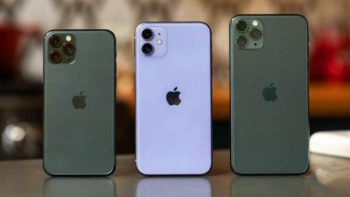 一片骂声中!iPhone11销量狂翻数倍,网友:这到底在打谁的脸?