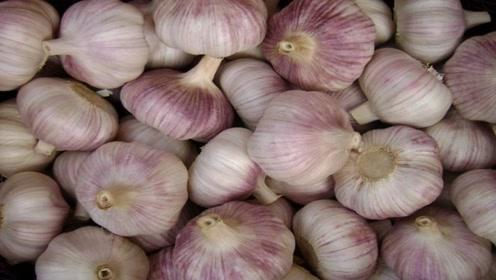 经常喜欢吃大蒜的人,吃大蒜的禁忌你们知道吗?早清楚早受益