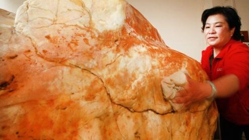 11吨奇石,400万买块石头又花100万运回家,有人出5000万不卖