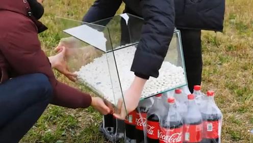 无糖可乐和可乐差别在哪里,老外用曼妥思实验,结果难以置信