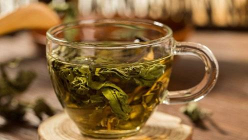 每天喝荷叶茶减肥?当心喝多了贫血