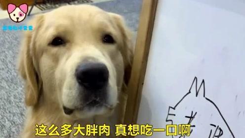 坑爹的狗,自己不动手,就能把男主人收拾喽