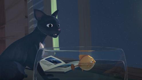 猫咪为把金鱼送回大海,一路躲避同伴的追杀,堪比好莱坞大片!