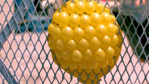 把气球装满水往铁网上扔去,气球会爆掉吗?慢镜头记录下震撼一刻!