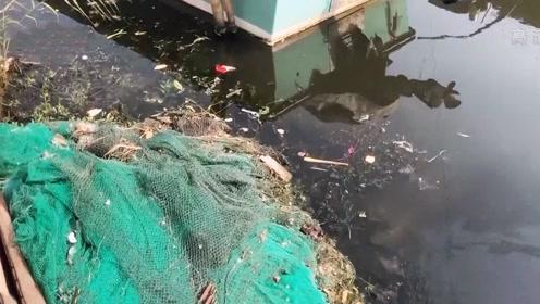 """阳澄湖旁上千农家乐,一天排污好几吨 大妈感慨""""河水脏死了"""""""
