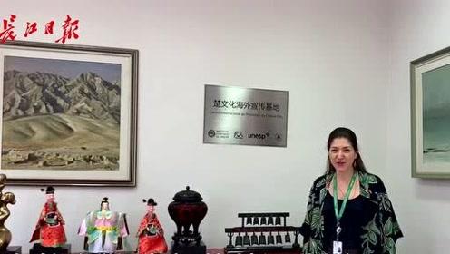 武汉师生扛起巴西圣保罗孔子学院,让更多人领略中国魅力