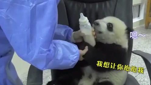大熊猫:奶妈你来就来嘛,还带什么好吃的,熊家都要把持不住了