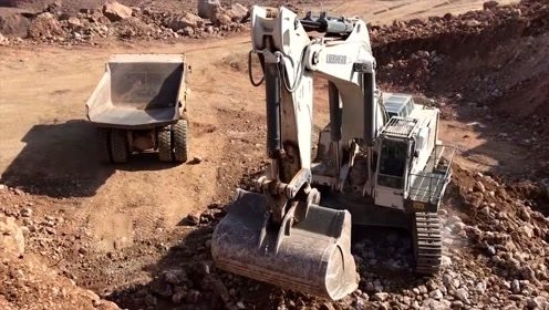 实拍大型利勃海尔挖掘机挖土装车,大挖机看着真霸气
