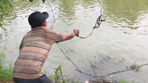 村边的废弃水坑,大哥使劲撒一网,没想到捕获一大盆新鲜的大野货