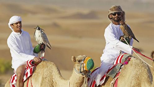 阿拉伯土豪那么多 他们平时是怎么花钱的