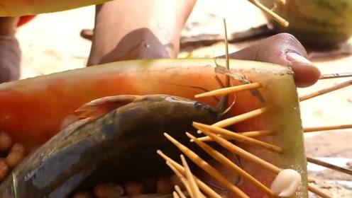 西瓜也能用来捕鱼?美国户外小哥亲测,自称坐收渔翁之利