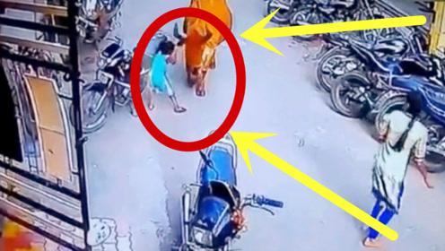 印度小男孩被公牛袭击,亲妈冷眼旁观,让人无语!