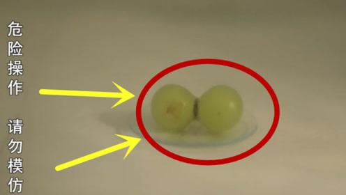 将两颗葡萄丢进微波炉,转动开关后神奇事情发生了,简直不敢相信!