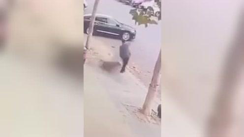 神走位!野猪冲到街上撞人 行人一个闪躲 野猪自己摔了