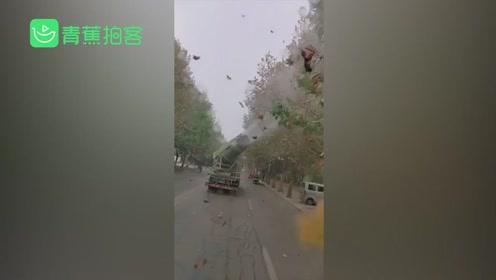 误会!网曝环卫用扬尘炮筒车吹黄叶 城管:司机角度没调好已批评