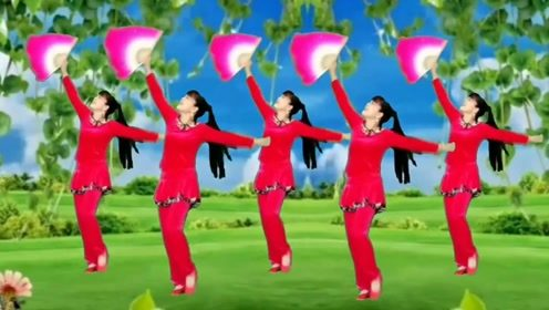 明天会更好广场舞《荞麦花》原创网红秧歌单扇舞优美简单