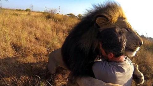 小伙十年前救下小狮子,回到大草原探望,结果令人意外