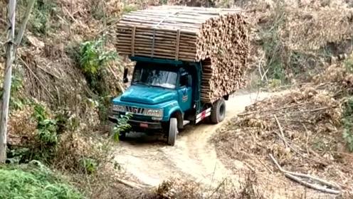 真佩服司机的开车技术,居然敢拉那么多的木头,让人不佩服都不行!