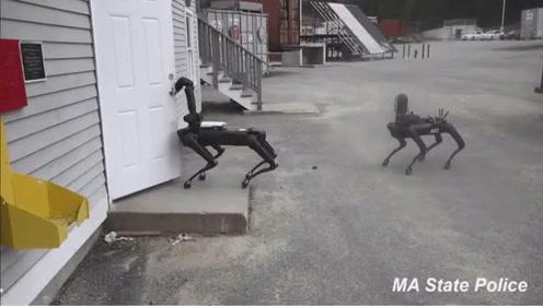 """波士顿动力的机器狗有了一个新身份——""""警犬"""""""