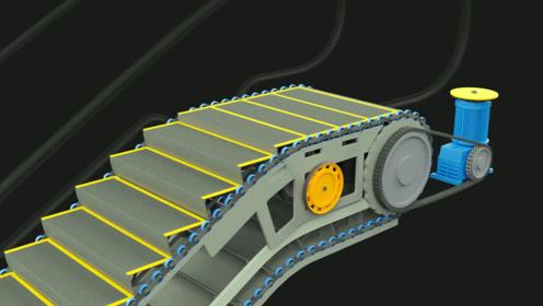 3D动画展示,扶梯运行原理和内部结构,太直观了