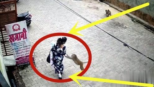 女子正走着,下秒提包就被抢走,这小贼可不一般!