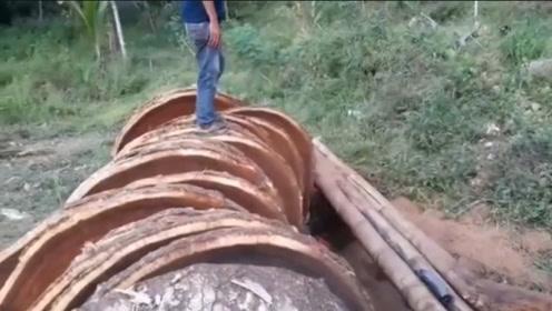 这么大一棵树,没有百年也有七八十年,你砍下来切砧板?