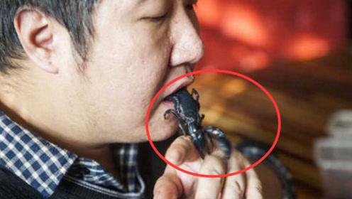 中国奇男子!剧毒蜘蛛、蛇吞入口中,真替他揪心