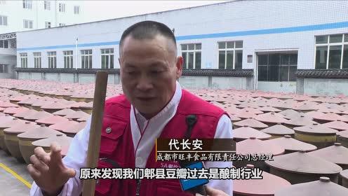 新华纵横|郫县豆瓣的红火世界(成品)(高清)