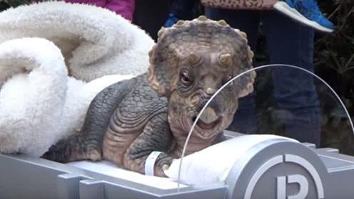 日本发现古铜色幼崽,疑似是远古生物,网友:恐龙复活了?