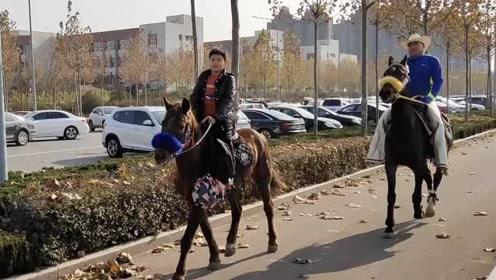 家里有11匹马,山东7岁男孩放学骑马回家:像侠客一样威猛