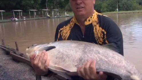 一块面包,换来一条几十斤中的大鱼,这也太值了!