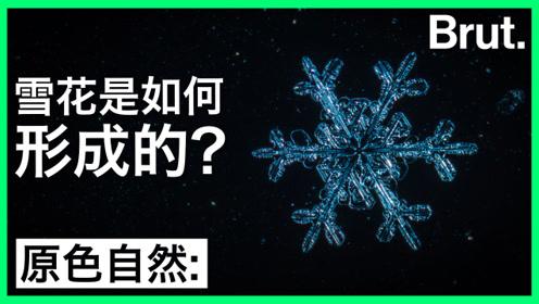 雪花是如何形成的?