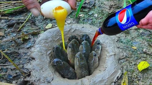 男子野外挖出小洞,倒入可乐和鸡蛋,几分钟后收获意外惊喜!