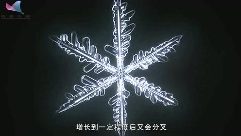 雪花为什么是六角形?