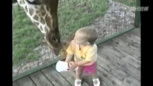 熊孩大闹动物园爆笑一箩筐 动物们全都崩溃了