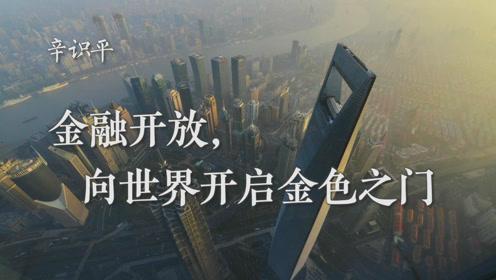辛识平:金融开放,向世界开启金色之门