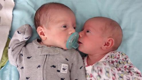 两个月龙凤胎妹妹看到哥哥有奶嘴,自己却没有,接下来的反应萌化了