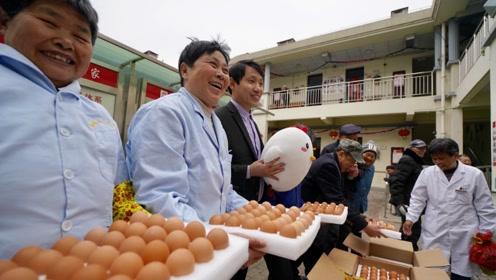 小伙手机上养小鸡献爱心,意外获赠1265枚鸡蛋,一家一年吃不完